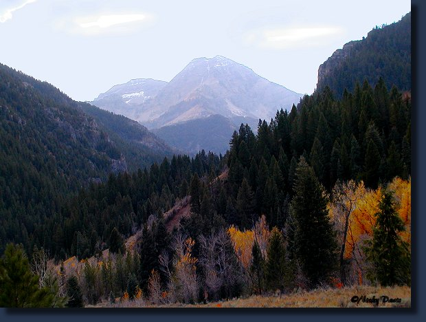 Tibble Fork to Timpanogos in Fall